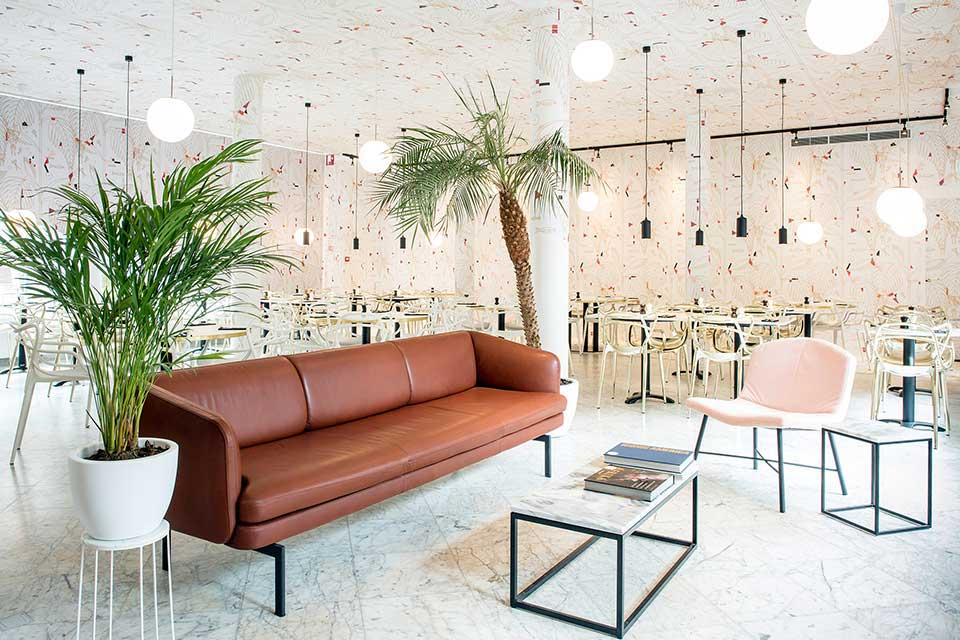 LBG Spaces Little Cannes 2